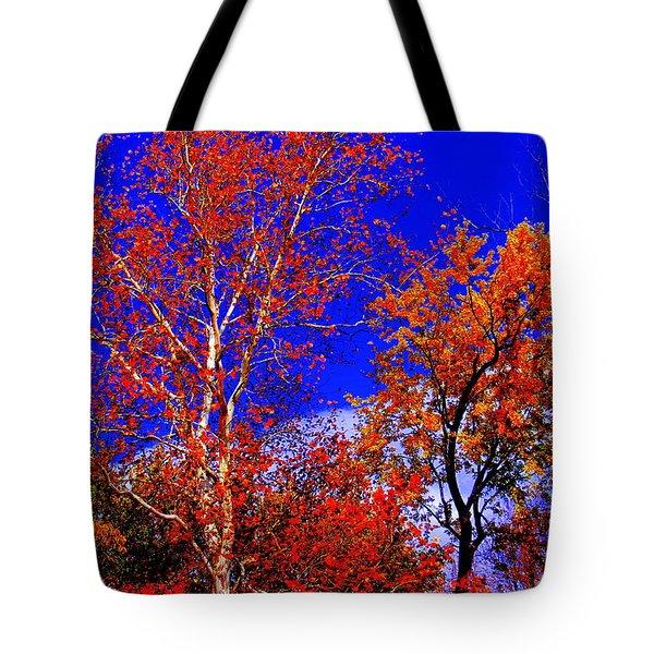 Paprika Tote Bag by Ed Smith
