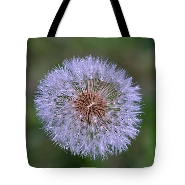 Parachute Club- Dandelion Gone To Seed Tote Bag by David Porteus
