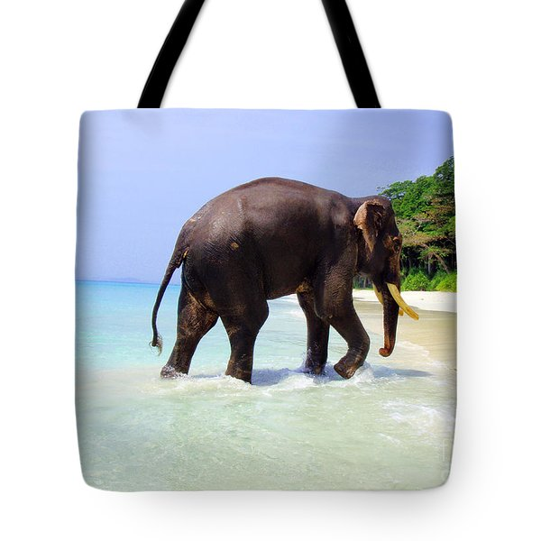 Paradise Found Tote Bag by Jacqueline Russell