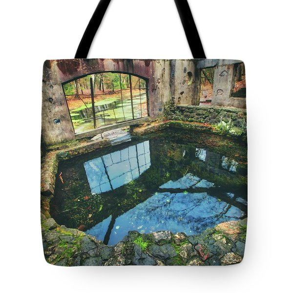 Tote Bag featuring the photograph Paradise Springs- Spring House - Kettle Moraine State Forest by Jennifer Rondinelli Reilly - Fine Art Photography