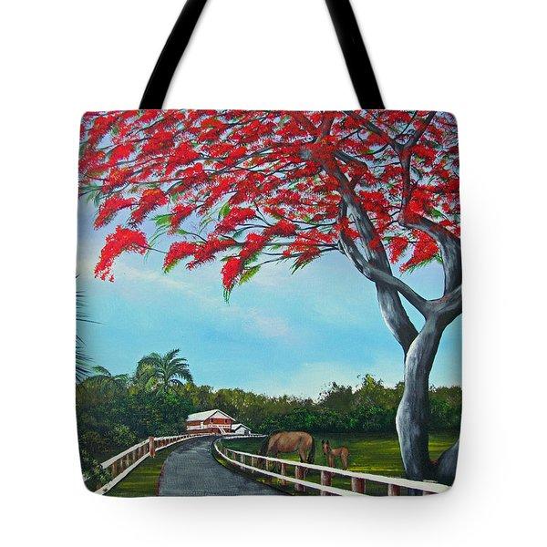 Paraiso Tote Bag