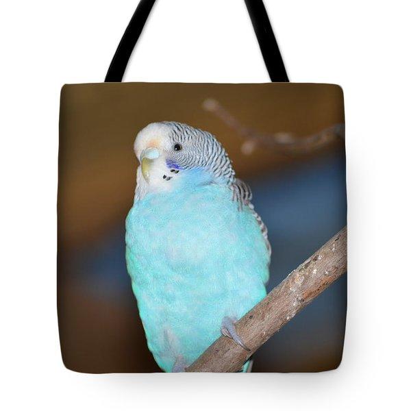 Parakeet Tote Bag by Linda Geiger