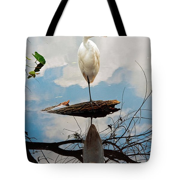 Parallel Worlds Tote Bag by Christopher Holmes