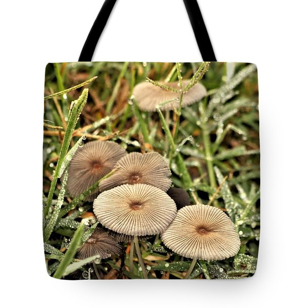 Tote Bag featuring the photograph Parasol Mushrooms And Morning Dew by Sheila Brown