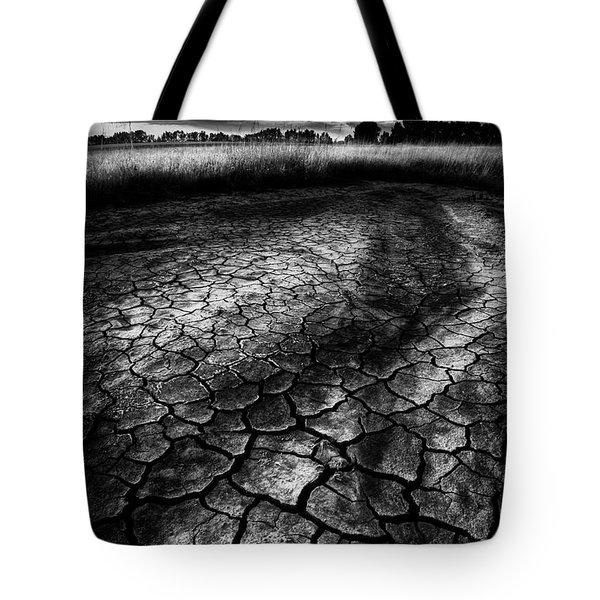 Parched Prairie Tote Bag