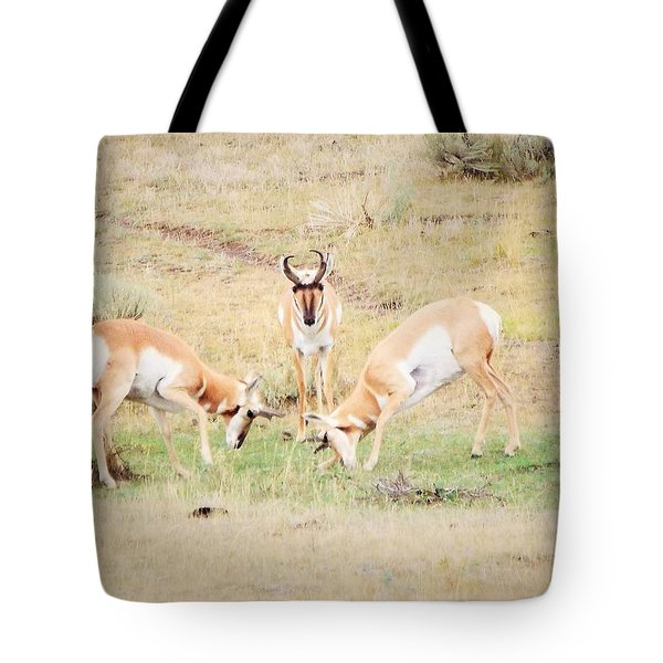 Parent Watching Sparring  Tote Bag