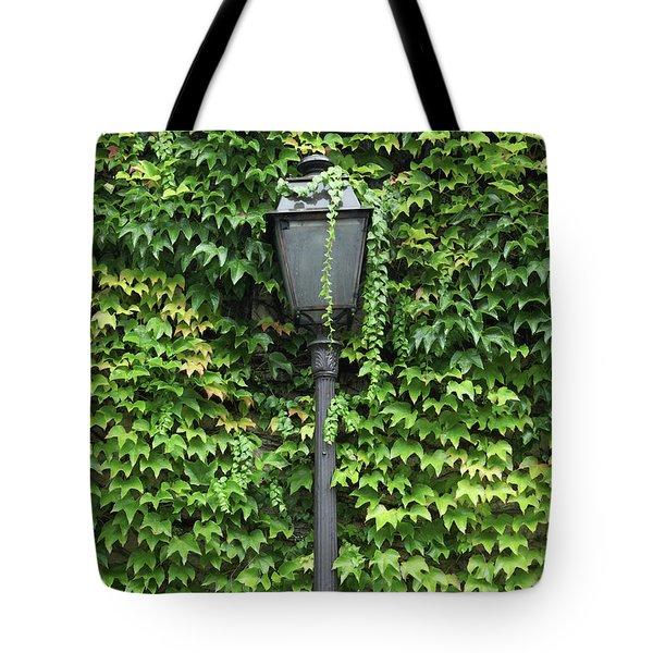 Parisian Lamp And Ivy Tote Bag by Yoel Koskas