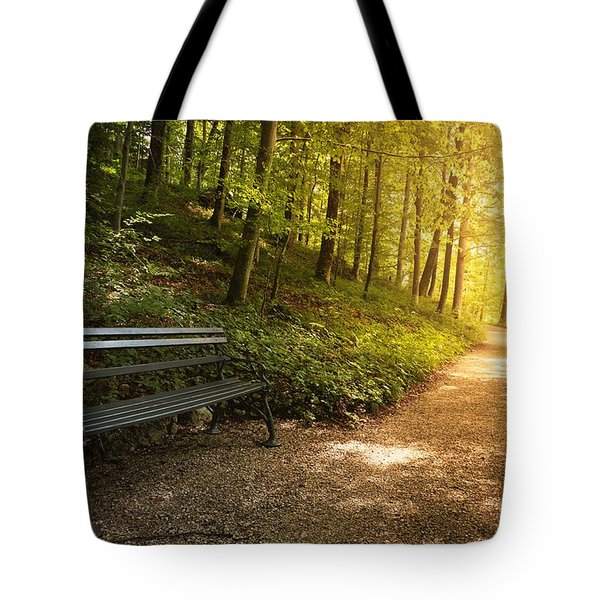 Park Bench In Fall Tote Bag by Chevy Fleet