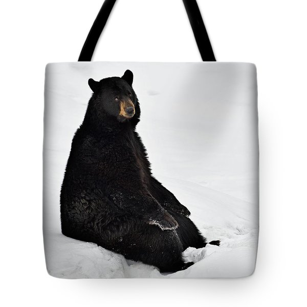 Tote Bag featuring the photograph Park Bench by Tony Beck