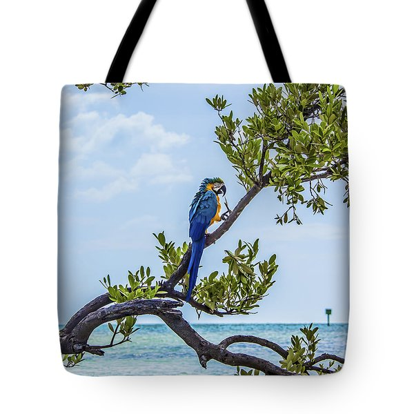 Tote Bag featuring the photograph Parrot Above The Aqua Sea by Paula Porterfield-Izzo