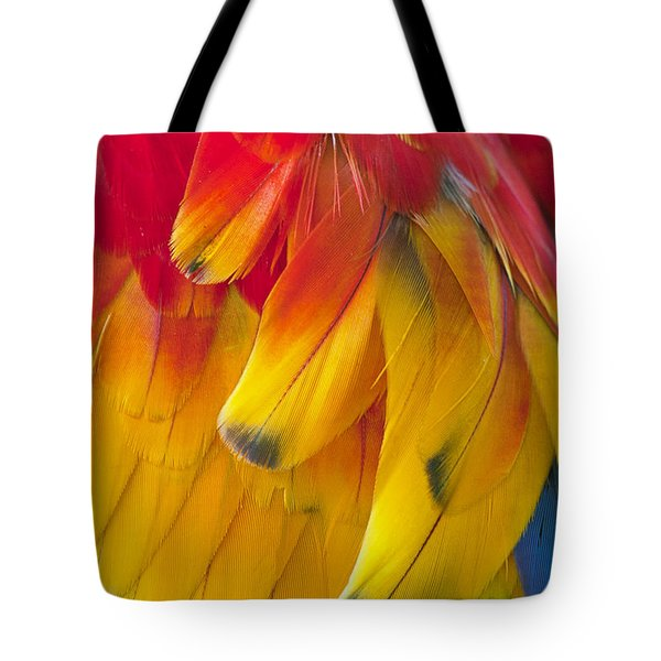 Tote Bag featuring the photograph Parrot Feathers by Ken Barrett