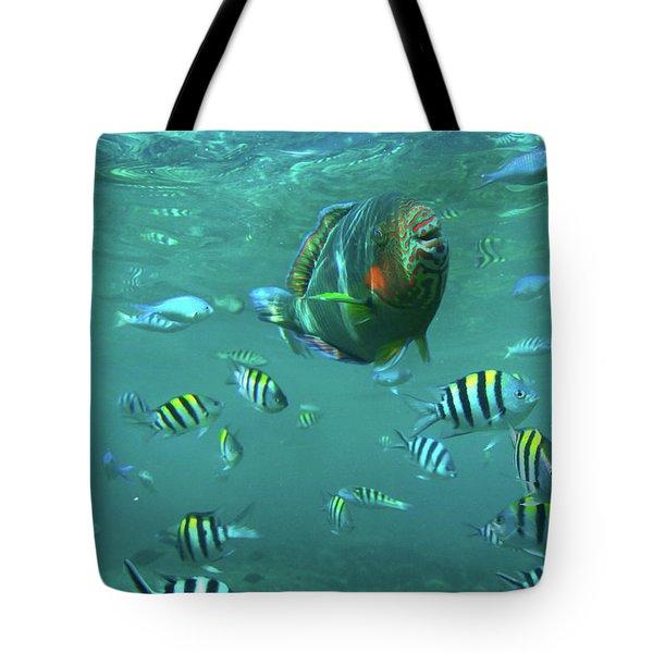 Parrot Fish Tote Bag