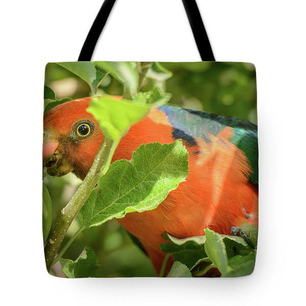 Tote Bag featuring the photograph  Parrot In Apple Tree by Werner Padarin