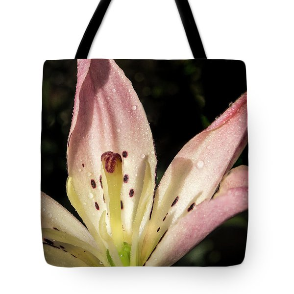 Tote Bag featuring the photograph Partitioned Lily by Jean Noren