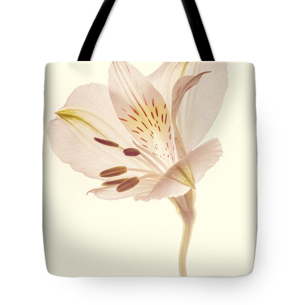 Tote Bag featuring the photograph Pasae Alstroemeria By Flower Photographer David Perry Lawrence by David Perry Lawrence