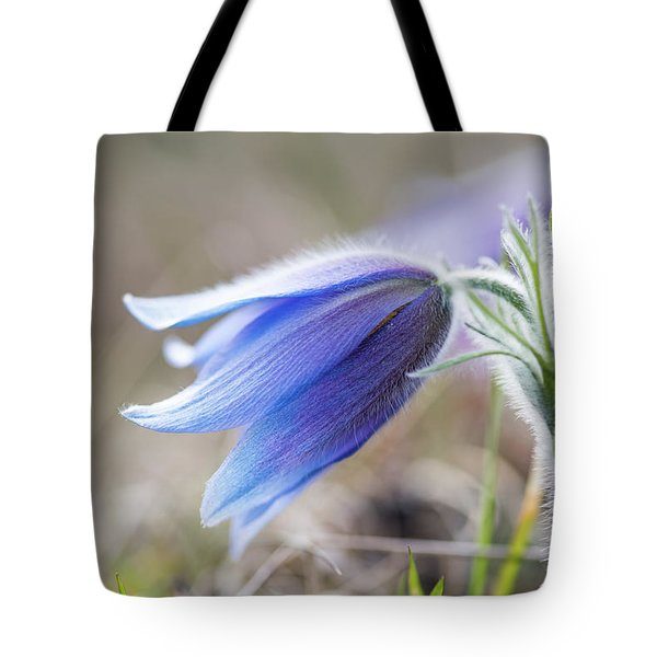 Pasque Flower's Silver Grey Hair Tote Bag