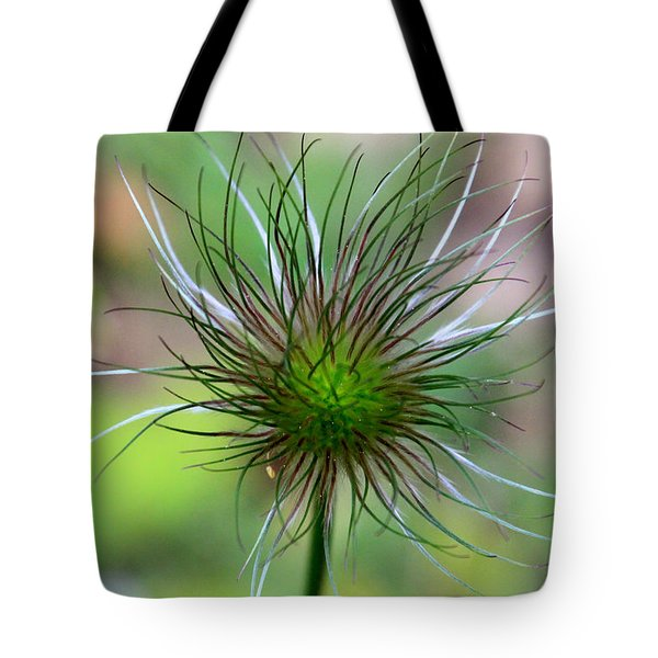 Pasque Fluff Tote Bag