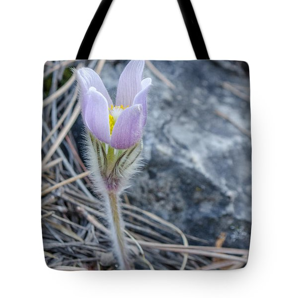 Pasque On The Rocks Tote Bag