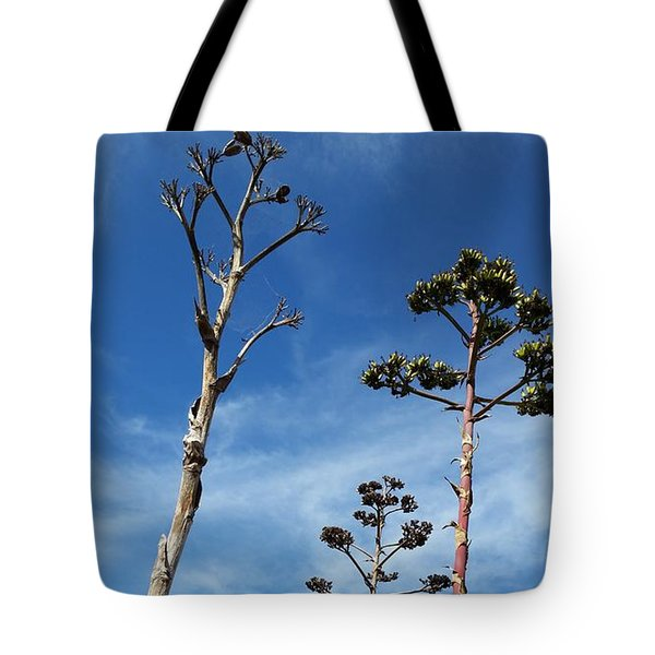 Passing Centuries Tote Bag