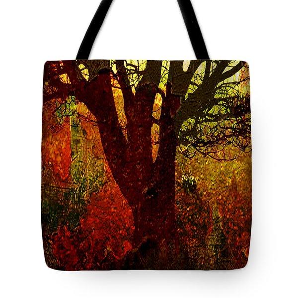 Past Life Tote Bag