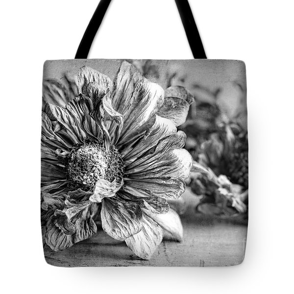 Tote Bag featuring the photograph Past Prime Time by Elena Nosyreva