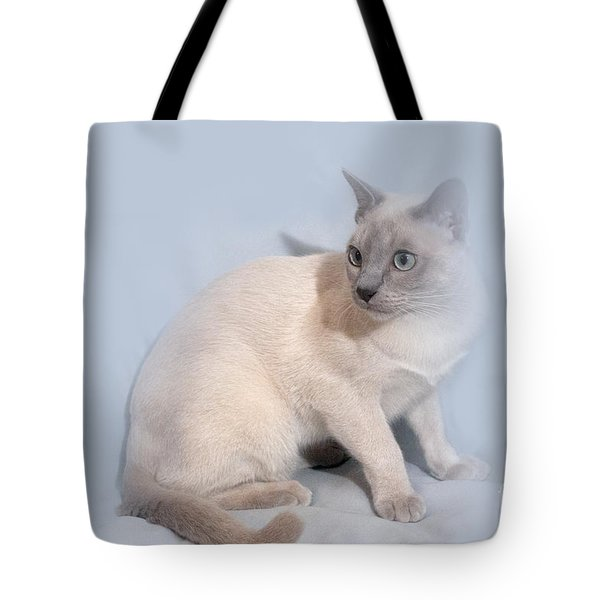 Pastel Angel Kitty Tote Bag