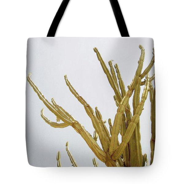 Pastel Cactus- Art By Linda Woods Tote Bag
