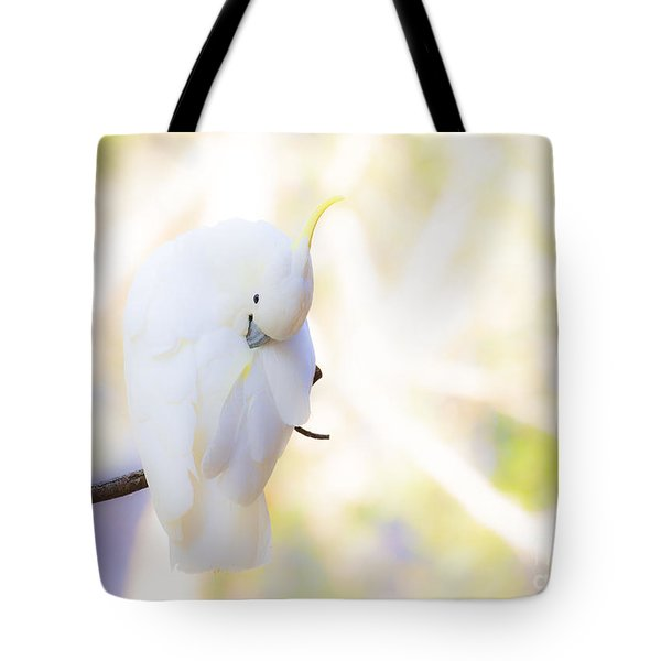 Pastel Cockatoo Tote Bag by Avalon Fine Art Photography