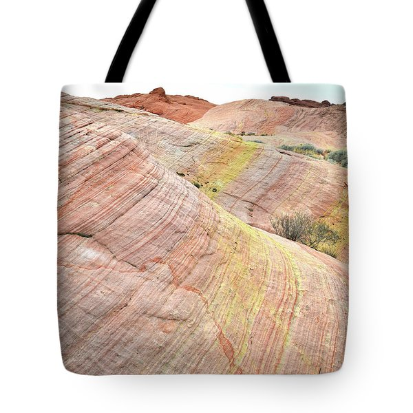 Tote Bag featuring the photograph Pastel Dunes In Valley Of Fire by Ray Mathis