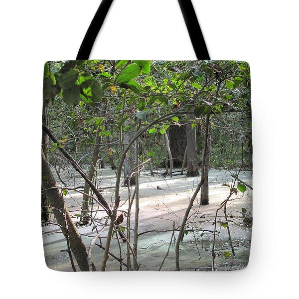 Pastel Light Tote Bag