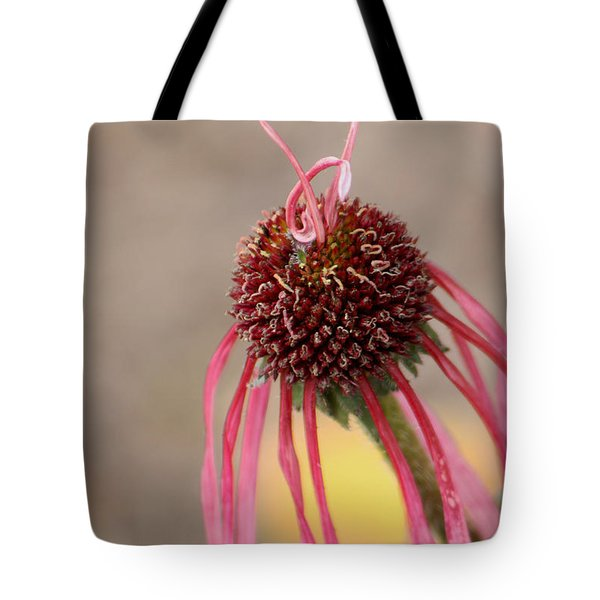Tote Bag featuring the photograph Pastel Perfection by Deborah  Crew-Johnson