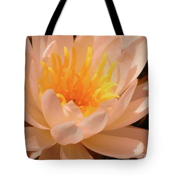 Pastel Pleasures  Tote Bag