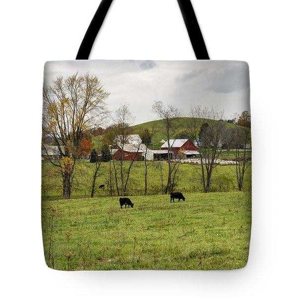 Tote Bag featuring the photograph Pastoral by Larry Ricker