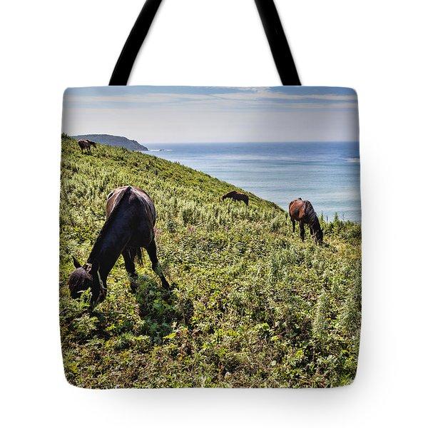 Pasture #2746 Tote Bag