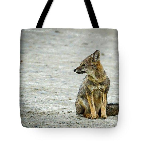 Patagonia Fox - Argentina Tote Bag