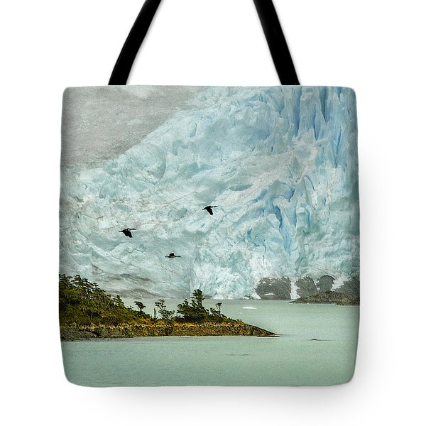 Tote Bag featuring the photograph Patagonia Glacier by Alan Toepfer