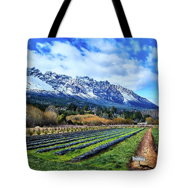 Landscape With Mountains And Farmlands In The Argentine Patagonia Tote Bag