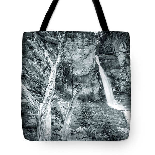 Patagonian Waterfall Tote Bag by Andrew Matwijec