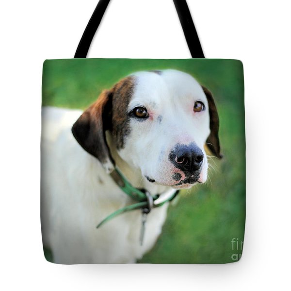 ''patch'' Tote Bag by Marion Johnson