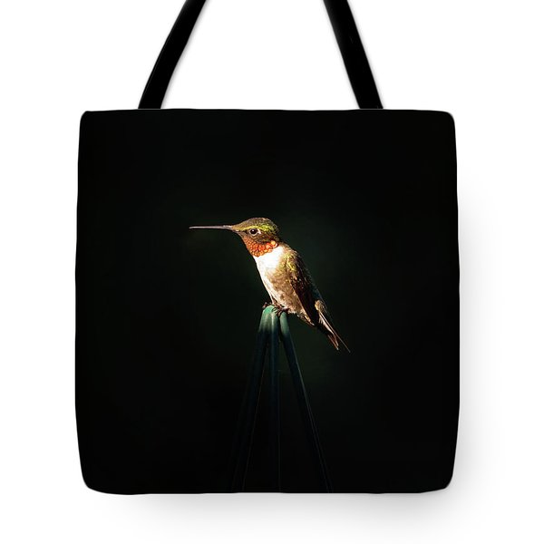 Patch Of Morning Sun Tote Bag