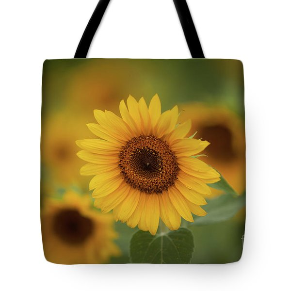 Patch Of Sunflowers Tote Bag