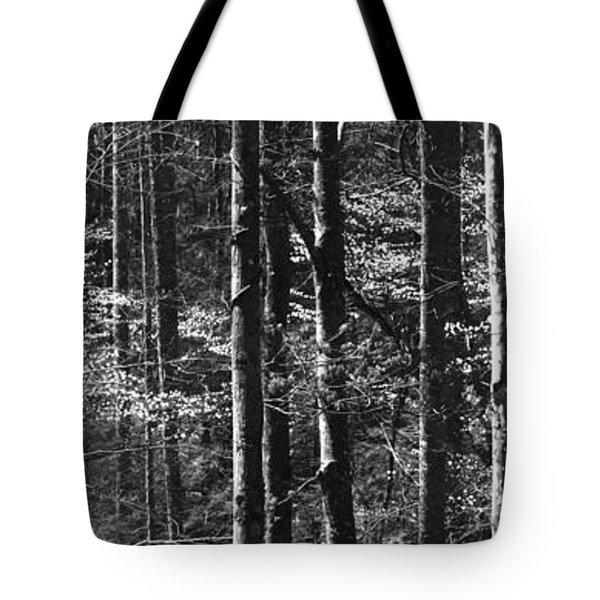 Patchwork Dogwood Panorama Bw Tote Bag