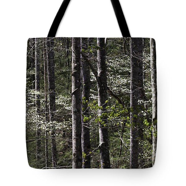 Patchwork Dogwood Panorama Tote Bag