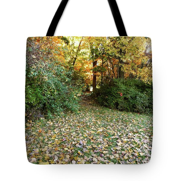 Path Entry Ahead Tote Bag