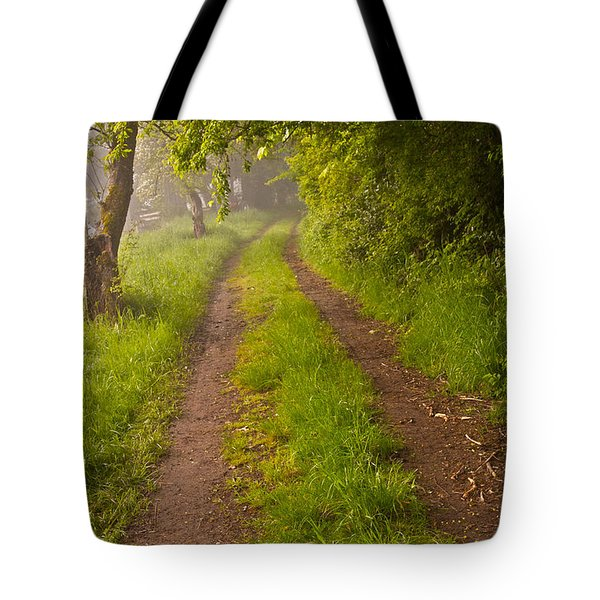 Path From Bullock Lake Tote Bag