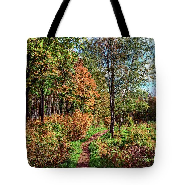 path in a beautiful country Park on a Sunny autumn day Tote Bag