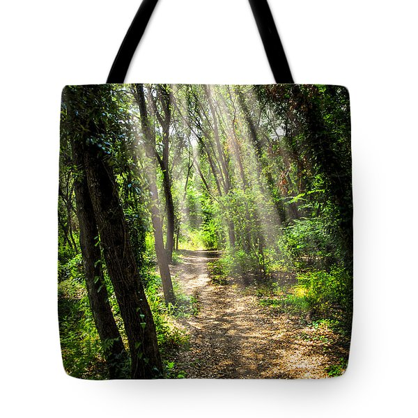 Path In Sunlit Forest Tote Bag by Elena Elisseeva