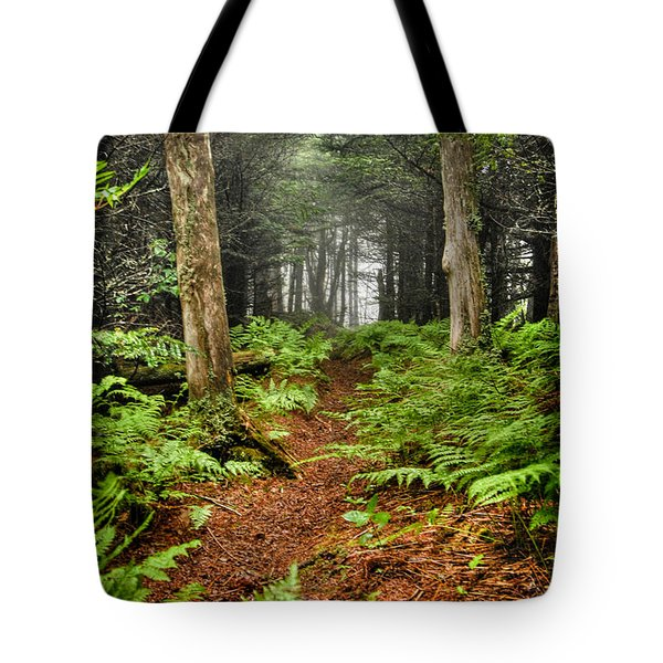 Path In The Ferns Tote Bag