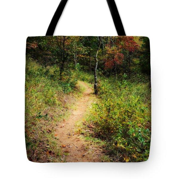 Path In The Prairie Tote Bag by Diana Boyd