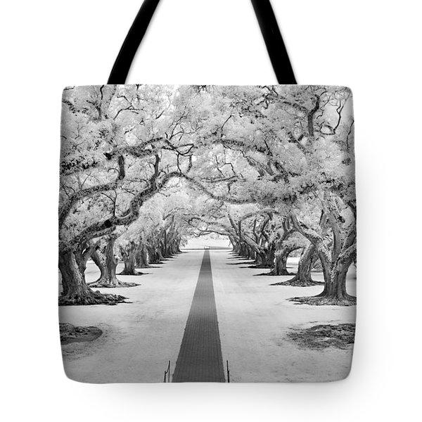 Path Of Dreams  Tote Bag